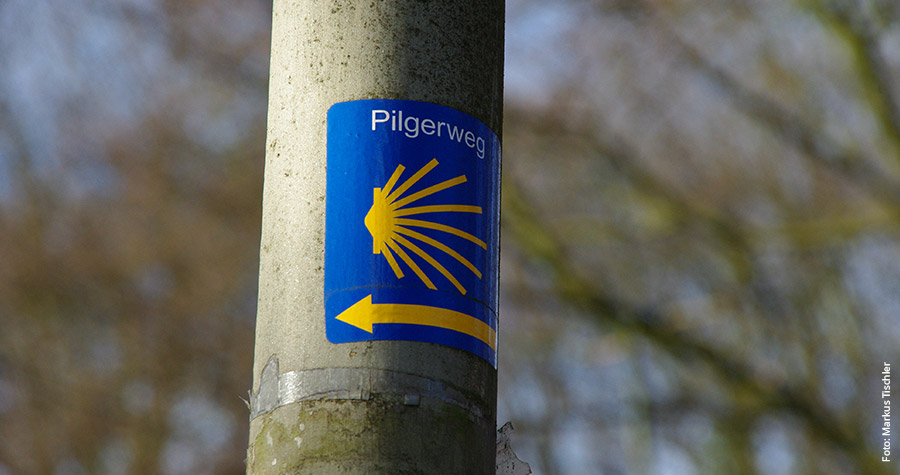 Gelbe Muschel auf blauem Grund: Wegweiser für Jakobsweg-Pilger auf der Via Baltica