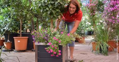 Wortmann-Mitarbeiterin Rita Ross zeigt, wie sich Pflanzen im Kübel pudelwohl fühlen.