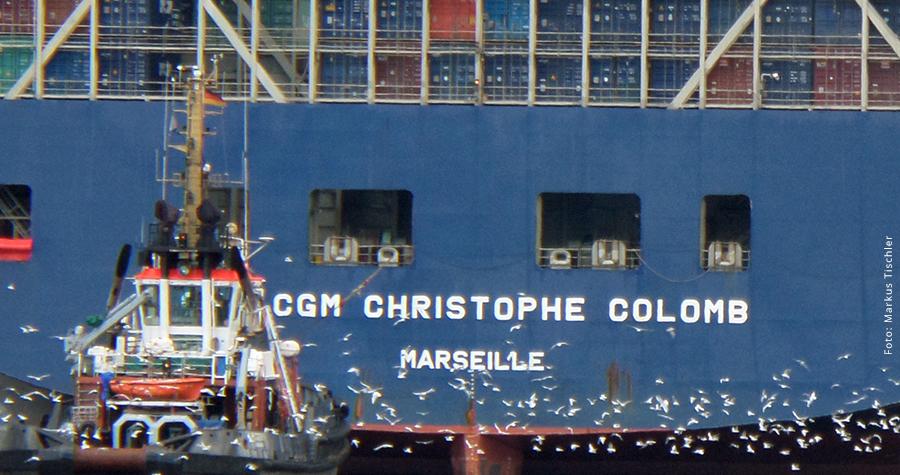 Ein Möwenschwar begleitet die Christophe Colomb beim Einlaufen in den Hamburger Hafen.