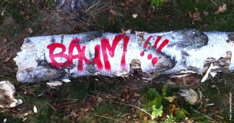 SCHNACKFRISCH! – Baumhafte Aussichten
