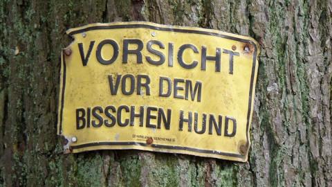 SCHNACKFRISCH! – Gefahrengebiet Garten