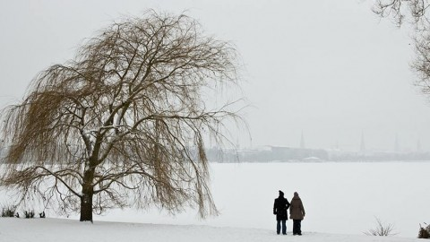 Fotokalender: Winteralster