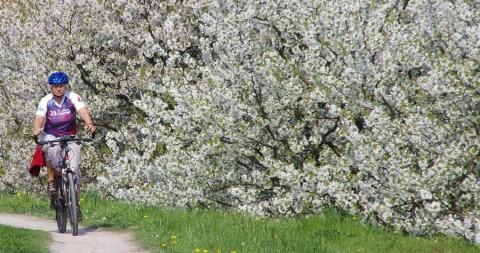 Frühjahrsschwung: Hamburgs schönste Radrouten