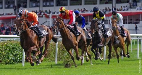 Deutsches Derby: Auf im Galopp
