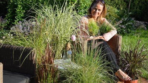 Faszination Gräser: Veredelung für Garten und Balkon