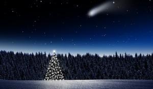 Leuchtender Weihnachtsbaum im Wald