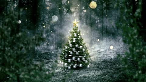 Weihnachtsgrüße – ein friedliches und glückliches Fest!