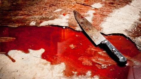 Kriminalromane: Mord und Totschlag an der Elbe