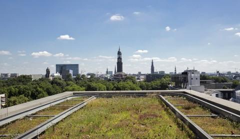 Auf die Dächer – Fertig – Grün!