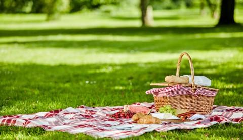Picknick-Zeit!