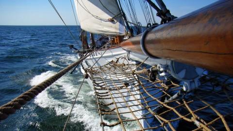 Hamburg maritim erleben